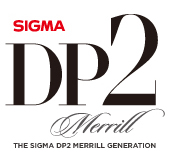 LoGO-DP2Merrill_o