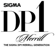 logo_DP1Merrill